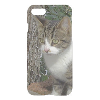 Grey Kitty Cat Stalking iPhone 7 Case