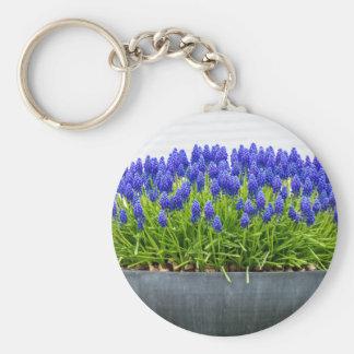 Grey metal flower box with blue grape hyacinths basic round button keychain