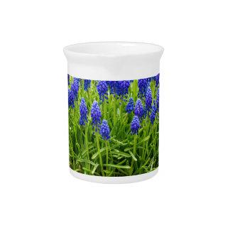 Grey metal flower box with blue grape hyacinths beverage pitchers