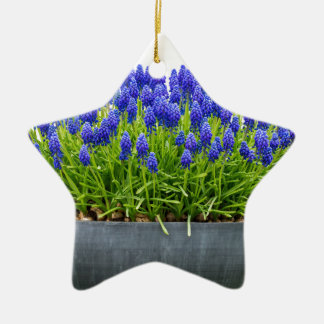 Grey metal flower box with blue grape hyacinths ceramic ornament