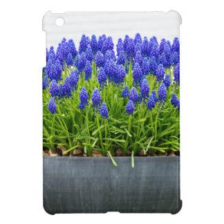 Grey metal flower box with blue grape hyacinths iPad mini case