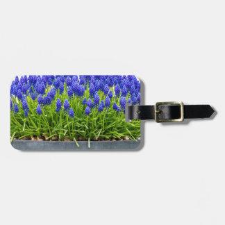 Grey metal flower box with blue grape hyacinths luggage tag