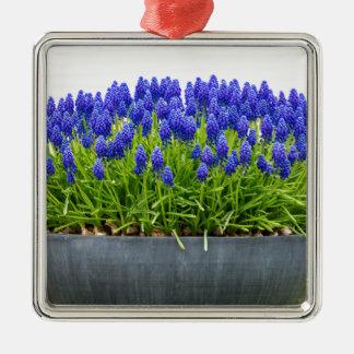 Grey metal flower box with blue grape hyacinths metal ornament