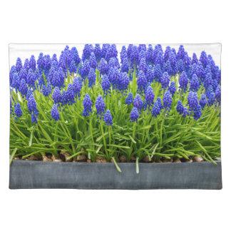 Grey metal flower box with blue grape hyacinths place mat