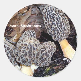 Grey Morels, Morel Mushrooms Classic Round Sticker