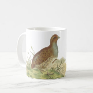 Grey Partridge Gamefowl Picture Coffee Mug