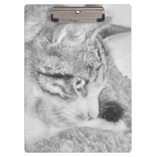 Grey Scale Cat Clipboards
