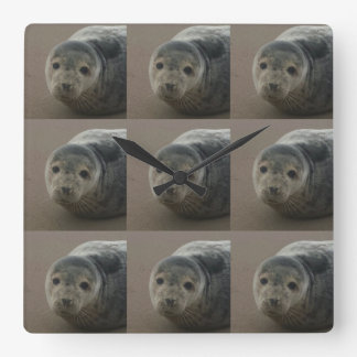 Grey seal pup on the beach. Cute baby Square clock