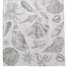 Grey Seashell Art Print Pattern Beachy