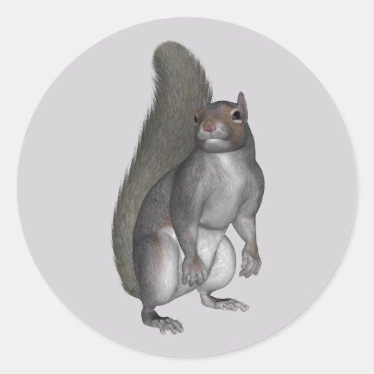 Grey Squirrel Classic Round Sticker