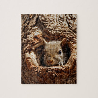 Grey Squirrel in a Hole Puzzle