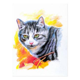 Grey Striped Cat Postcard