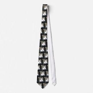 Grey Tabby Tie
