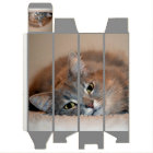 Grey, Tan, White Long-Haired Cat by Shirley Taylor Wine Gift Box
