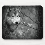 Grey Wolf - Black and White