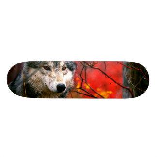 Grey Wolf in Beautiful Red and Yellow Foliage Custom Skateboard
