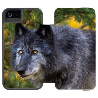 Grey Wolf Incipio Watson™ iPhone 5 Wallet Case