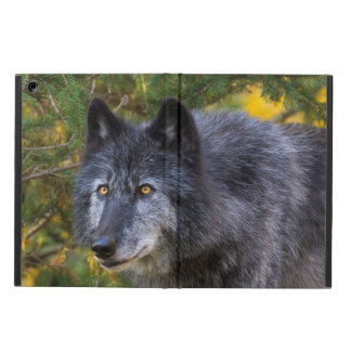 Grey Wolf iPad Air Cover