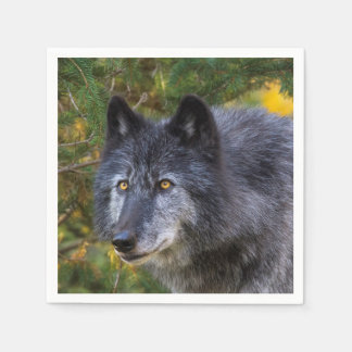 Grey Wolf Paper Napkin