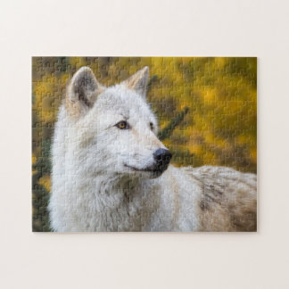 Grey Wolf Portrait on Gold Puzzle