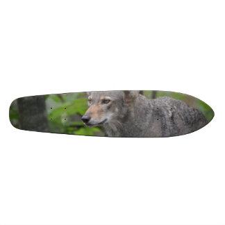 Grey Wolf Skateboards