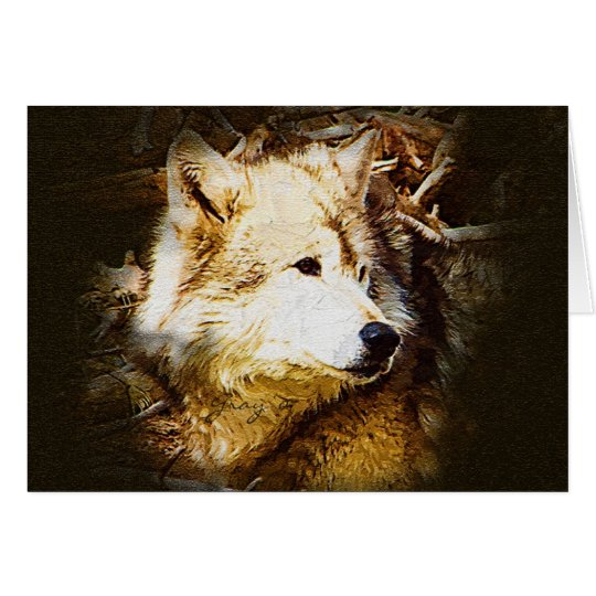 Grey Wolf Watching Card