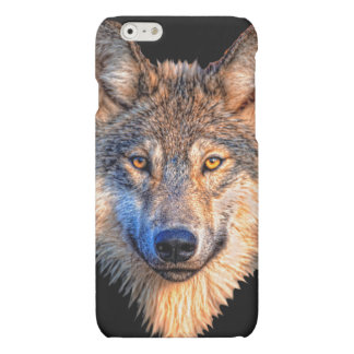 Grey wolf - wolf face