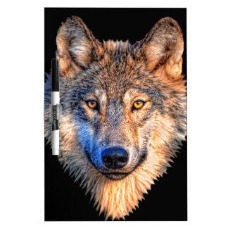 Grey wolf - wolf face dry erase board