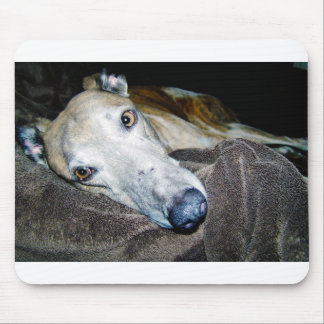 greyhound 2 mouse pad