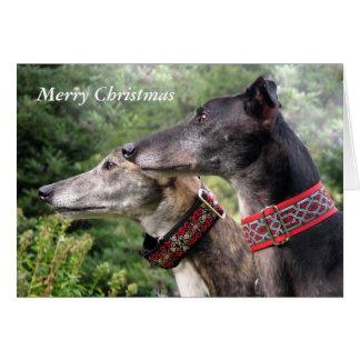 Greyhound Christmas card (p334)