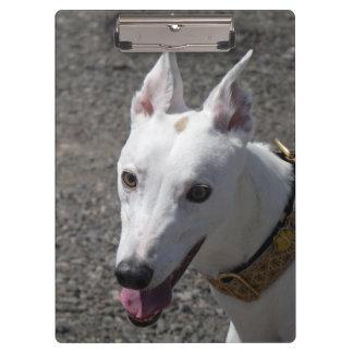 Greyhound clipboard (p385)