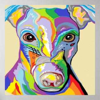 Greyhound Close Up Poster