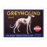 Greyhound Fruit Crate Label