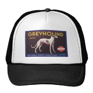 Greyhound Fruit Crate Label Hats