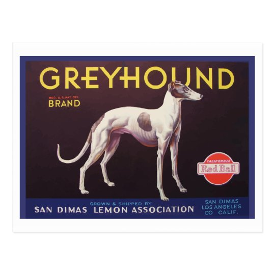 Greyhound Fruit Crate Label Postcard