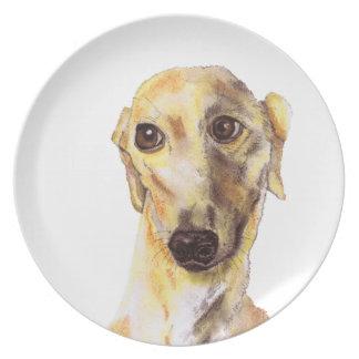 Greyhound g215 plate