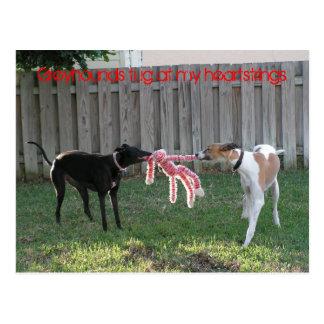Greyhound heartstrings postcard