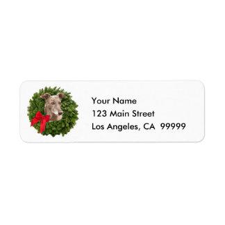 Greyhound in Xmas Wreath