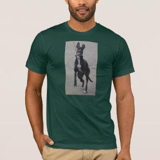 Greyhound Love on a shirt