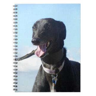 Greyhound notebook (P001)