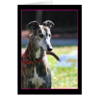 Greyhound notecard