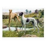 Greyhound Post Cards