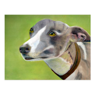 Greyhound postcard (a404)