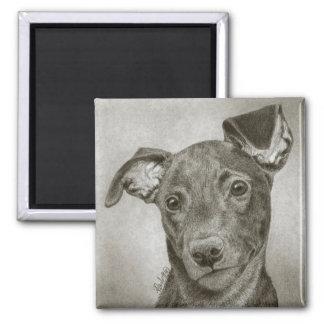 "Greyhound Pup Magnet - ""Waffle"""