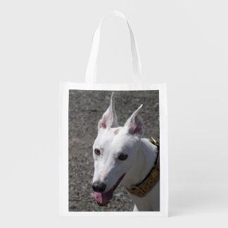 Greyhound reusable bag (p384)