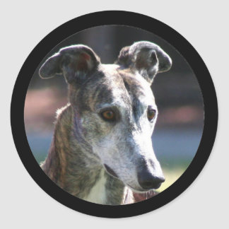 Greyhound stickers