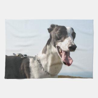 Greyhound teatowel - Handsome Boy P4 Kitchen Towel