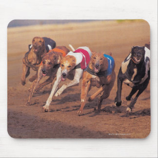 Greyhounds racing on track mouse pad