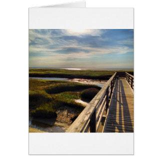 Greys Beach on Cape Cod Card