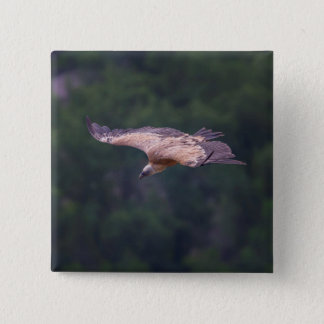 Griffon vulture, France 2 Inch Square Button